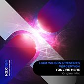 You Are Here (Liam Wilson Presents) de Perception