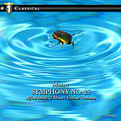 Mozart: Concerto for Basson and Orchestra, Symphony No. 25 by Various Artists