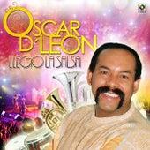 Llego la Salsa de Oscar D'Leon