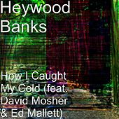 How I Caught My Cold (feat. David Mosher & Ed Mallett) by Heywood Banks