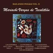 Bailando Polkas, Vol. II Con el Mariachi Vargas de Tecalitlán de Mariachi Vargas de Tecalitlan