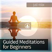 Guided Meditation for Beginners by Guided Meditation