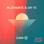 Cloud 9 by Shy FX