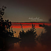 Little Things by Darshan Ambient
