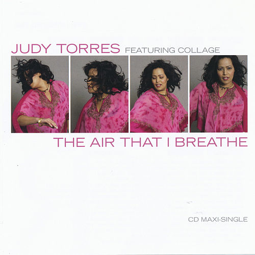The Air That I Breathe by Judy Torres