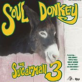 Soul Donkey by Sugarman 3