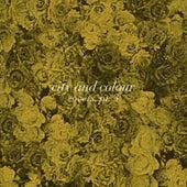 Covers Pt.3 von City And Colour