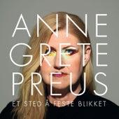 Et sted å feste blikket de Anne Grete Preus
