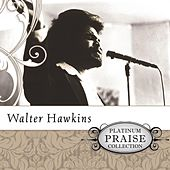 Platinum Praise Collection: Walter Hawkins de Walter Hawkins