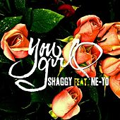 You Girl (feat. Ne-Yo) - Single de Shaggy