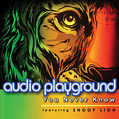 You Never Know (Could You Be Loved) by Audio Playground