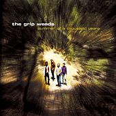 Summer of a Thousand Years by The Grip Weeds