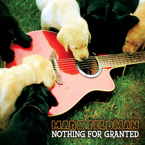 Nothing For Granted (feat. Dave Gaudet) by Marc Feldman