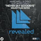 Never Say Goodbye (Wildstylez Remix) by Hardwell