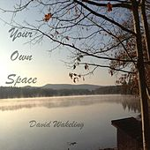 Your Own Space by David Wakeling