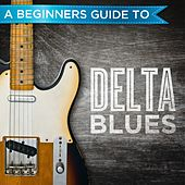 A Beginners Guide to: Delta Blues by Various Artists