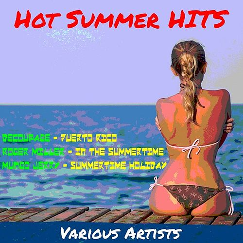 Hot Summer Hits by Various Artists