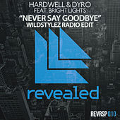 Never Say Goodbye (Wildstylez Radio Edit) de Hardwell
