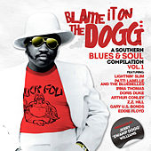 Blame It on the Dogg: A Southern Blues & Soul Compilation Vol. 1 de Swamp Dogg
