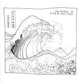 The Double EP: A Sea of Split Peas van Courtney Barnett