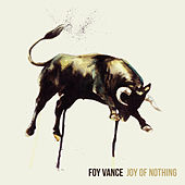 Joy Of Nothing de Foy Vance