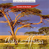 Into Africa by Sounds Of The Earth