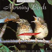 Morning Birds by Sounds Of The Earth