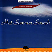 Hot Summer Sounds by Sounds Of The Earth