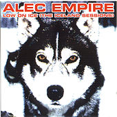 Low On Ice by Alec Empire