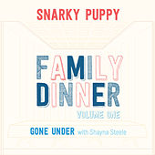 Gone Under (with Shayna Steele) by Snarky Puppy