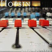 How You Like Me Now by Hopsin