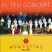El Teu Concert by Montgrins