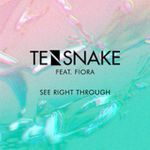 See Right Through de Tensnake