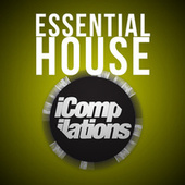 Essential House de Various Artists