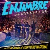 Enjambre Y Los Huéspedes Del Orbe (En Vivo Desde Auditorio Nacional/2012) de Enjambre