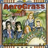 Aerograss by The Grassmasters