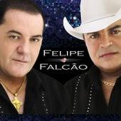 Felipe & Falcão von Felipe e Falcão