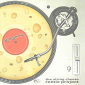 The String Cheese Remix Project de DJ Harry