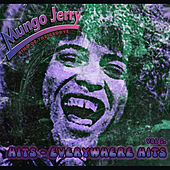 Hits Everywhere, Vol. 2 by Mungo Jerry