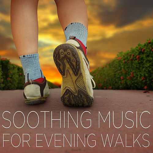 Soothing Songs for Evening Walks - Music to Reduce Stress by Various Artists
