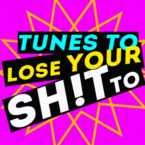Tunes to Lose Your Sh!t To! by Various Artists