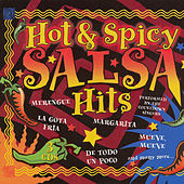Hot & Spicy Salsa Hits by The Countdown Singers