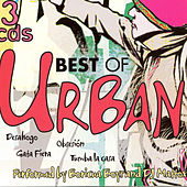 Best Of Urban de Boricua Boys