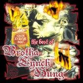 The Best of Brotha Lynch Hung von Brotha Lynch Hung