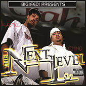 Big Fedi Presents The Next Level von Various Artists