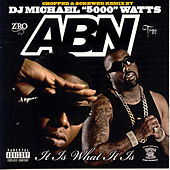 It Is What It Is (Screwed) by ABN