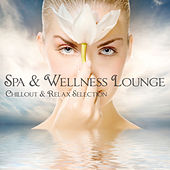 Spa & Wellness Lounge (Chillout & Relax Selection) by Various Artists