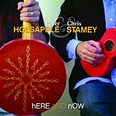Here and Now de Peter Holsapple & Chris Stamey