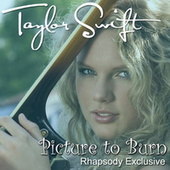 Picture To Burn by Taylor Swift