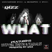 What (feat. Brutha Smith & Kadalis) de Dizz